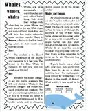 2nd Grade Reading Flashback