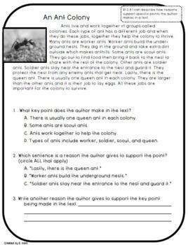 2nd Grade Reading Informational Assessment Bundle