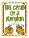 Life Cycle of a Pumpkin Resource Pack