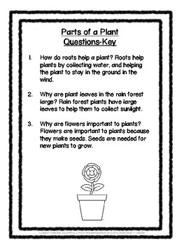 2nd Grade Science Buddy Reading: Plants