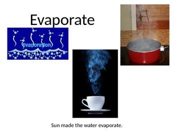 2nd Grade Science Vocabulary Digital Word Wall 4