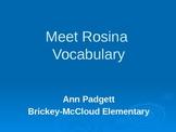 2nd Grade Treasures Vocabulary Powerpoint for Meet Rosina
