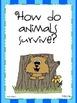 2nd Grade Wonders Reading ~ Unit 2 Week 1 ~ Animals in Nature