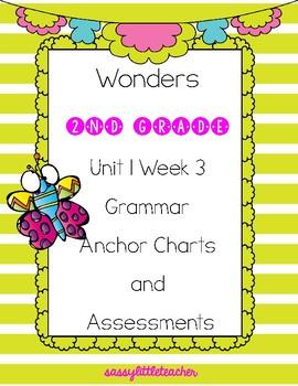 2nd Grade Wonders Unit 1 Week 3 Grammar Charts and Assessments