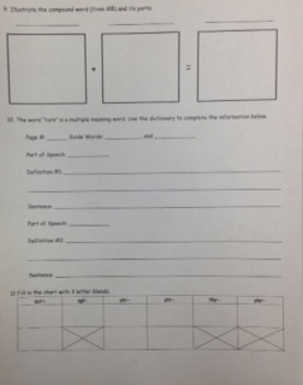 2nd Grade Wonders Unit 2 Week 5 Beyond Response - Ava's Animals