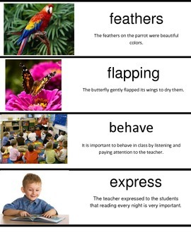 2nd Grade Wonders Unit 2 Week 5 Vocabulary Cards with Picture and Sentence