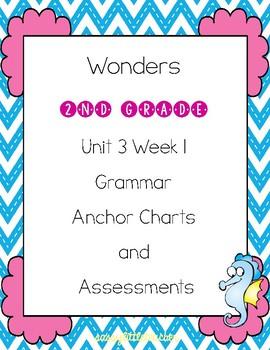 2nd Grade Wonders Unit 3 Week 1 Grammar Charts and Assessments