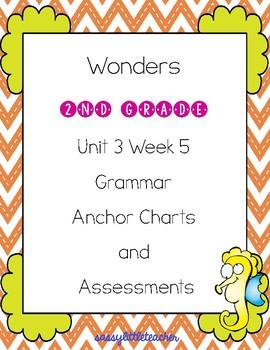 2nd Grade Wonders Unit 3 Week 5 Grammar Charts and Assessments