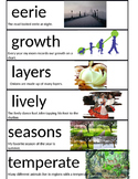 2nd Grade Wonders Unit 4 Week 1 Vocabulary Picture cards with sentence