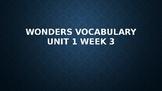 2nd Grade Wonders Vocabulary (Unit 1 Week 3)