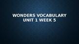 2nd Grade Wonders Vocabulary (Unit 1 Week 5)