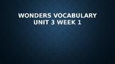 2nd Grade Wonders Vocabulary (Unit 3 Week 1)