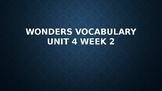 2nd Grade Wonders Vocabulary (Unit 4 Week 2)