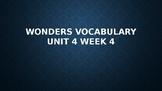 2nd Grade Wonders Vocabulary (Unit 4 Week 4)