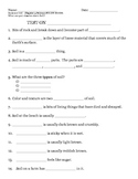 2nd grade NG Science - Rocks & Soil (Ch 3) Study Guide & T