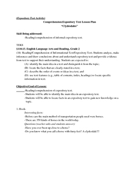 2nd grade Reading: Multi Skill Component Lesson Plan