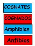 2nd grade cognate word wall words