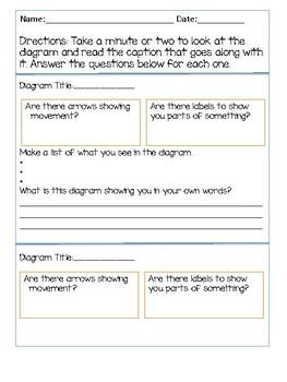 3 4 5 ri 7 diagrams by ms quadrozzis corner teachers pay teachers Translation Diagram