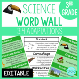 Life Processes: 3rd Grade Science Word Wall