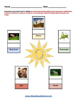 3- 8 Grade - Food Chains - For Gifted and Talented - Reading and Science - ESSA