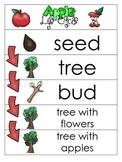 3 Apple Life Cycle Charts and Worksheets. Preschool-1st Grade. Homeschool.