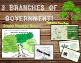 3 Branches of Government Graphic Organizer