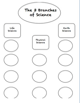 3 Branches of Science Graphic Organizer