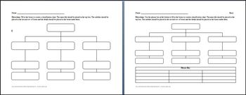3 Category Classification Chart Graphic Organizer