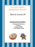 3-D Cell Model Assessment Project