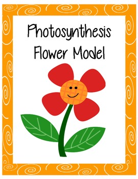3-D Flower Model - Plant Parts and Photosynthesis
