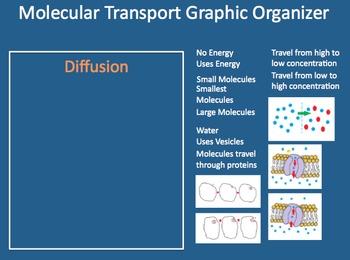 3-Day Osmosis, Diffusion, and Molecular Transport mini-Unit