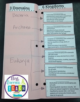 3 Domains and 6 Kingdoms Differentiated Foldable