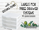 3 Drawer Organizer Labels - Cactus Themed