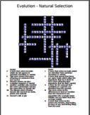 3 Evolution Crosswords with answer keys