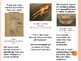 3-Fold Brochure: Art Vocabulary and Comparisons sentences
