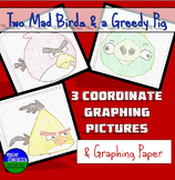 Coordinate Graphing Pictures: Birds Part 1