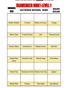 3-LEVEL SCAVENGER HUNT . . . WITH A TWIST . . . 10-PAGES . . OUTDOORS  3-DAYS