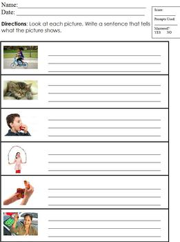 3-Level Differentiated Main Idea Worksheet; Sight Words