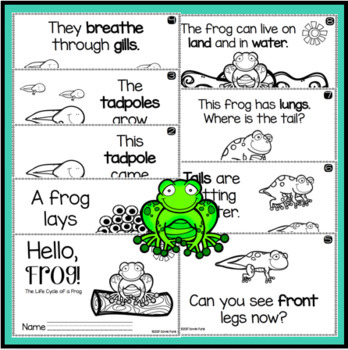 Life Cycle of a Frog Butterfly Chicken Emergent Reader Booklets