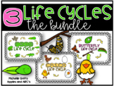 3 Life Cycles: Frog, Chicken, Butterfly {Bundled}