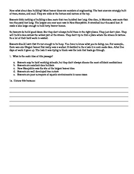 Main Idea Practice Sheets (3 worksheets)