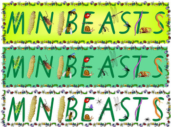 3 Minibeasts Banners Over 3 A4 Pages Long Bugs Insects Poster Display