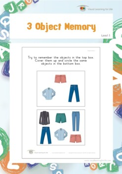 3 Object Memory