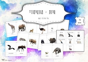 3-Part Cards Animals Montessori-- hebrew