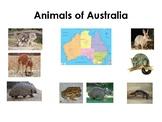 3-Part Cards---Animals of Australia