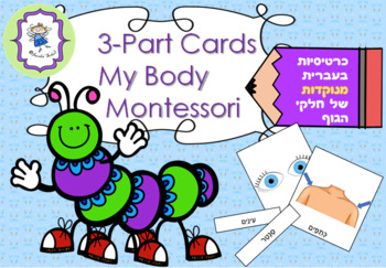 3-Part Cards My Body Montessori