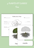 3 Part Cards - Parts of a Tree