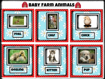3 Part Matching Cards, Farm Animal Vocabulary: Babies, Mommies & Daddies