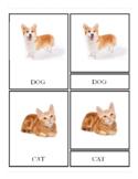 3-Part Montessori Pet Cards