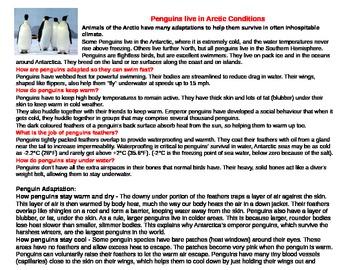3 Penguin adaptation info sheets (three levels)